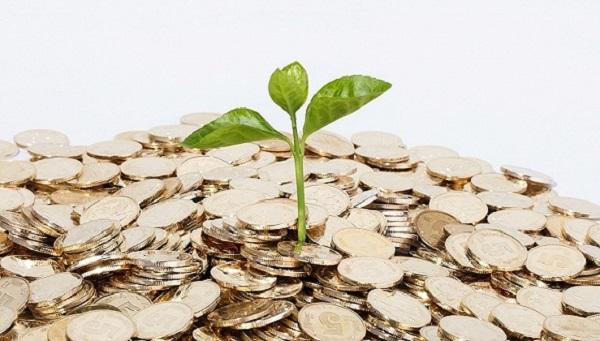 网贷新口子能立马拿钱的有哪些?这几个放款都很快!